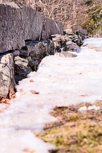 rock wall farmington